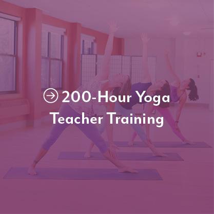 Kripalu School Of Yoga Kripalu
