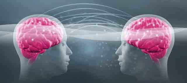Hardwired for empathy how mirror neurons connect us kripalu for Mirror neurons